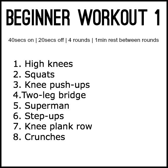 beginner1